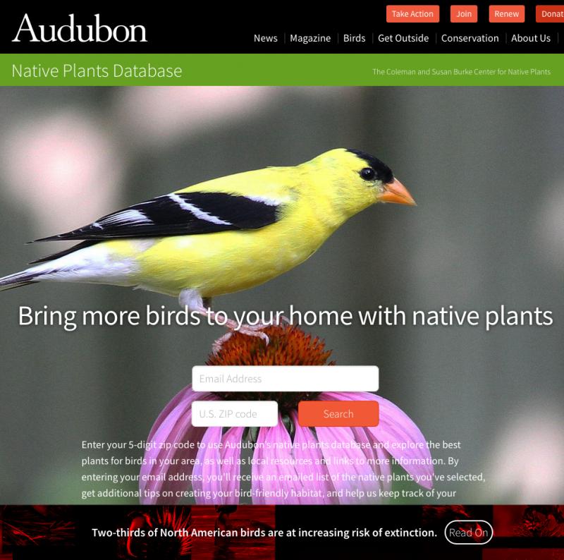 national audubon society native plants database