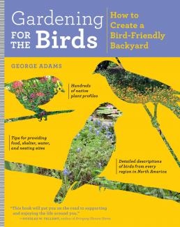 Gardening for the Birds: How to Create a Bird-Friendly Backyard cover