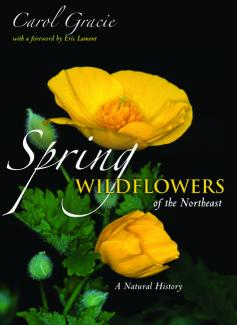 Spring Wildflowers of the Northeast book cover