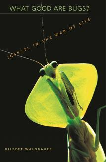 What Good are Bugs? Insects in the Web of Life book cover