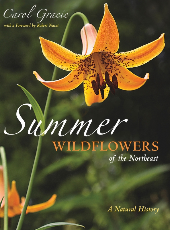 Summer Wildflowers of the Northeast book cover.