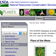 USDA PLANTS Database masthead.
